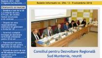 A apărut buletinul informativ InfoRegional Sud Muntenia nr. 296!